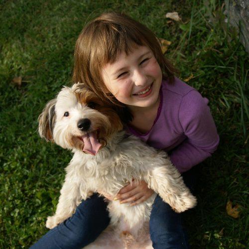 Girl Dog Waucondah Animal Hospital